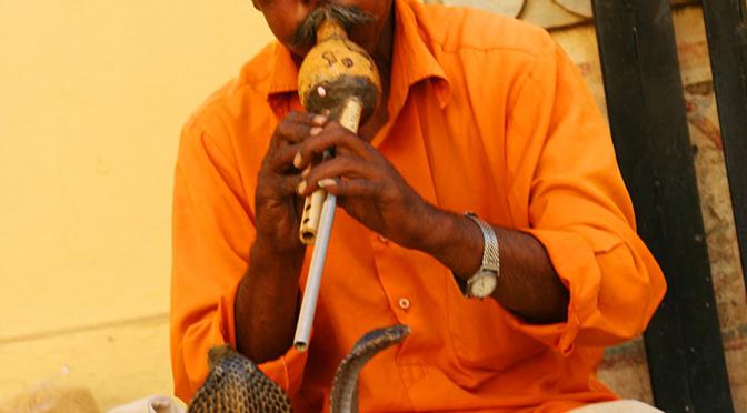 Fargerike Rajasthan