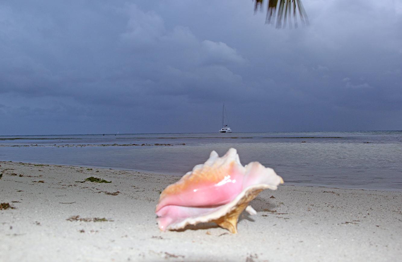 Barndomsdrømmen var å plukke konkyler på stranden. Det kunne jeg gjort i Belize.