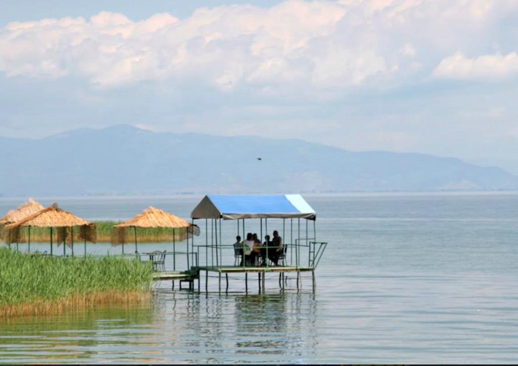 Albania Orchidinnsjøen, med Makedonia i bakgrunnen.