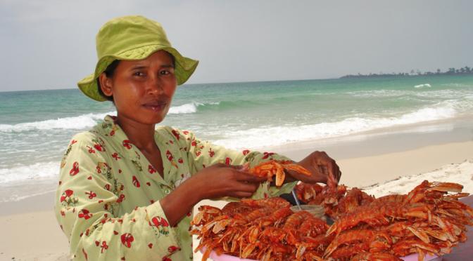 Strandløve i Kambodsja