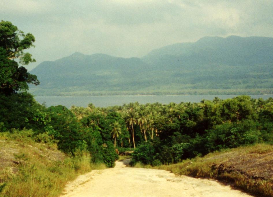 Hovedveien på øya Efate.