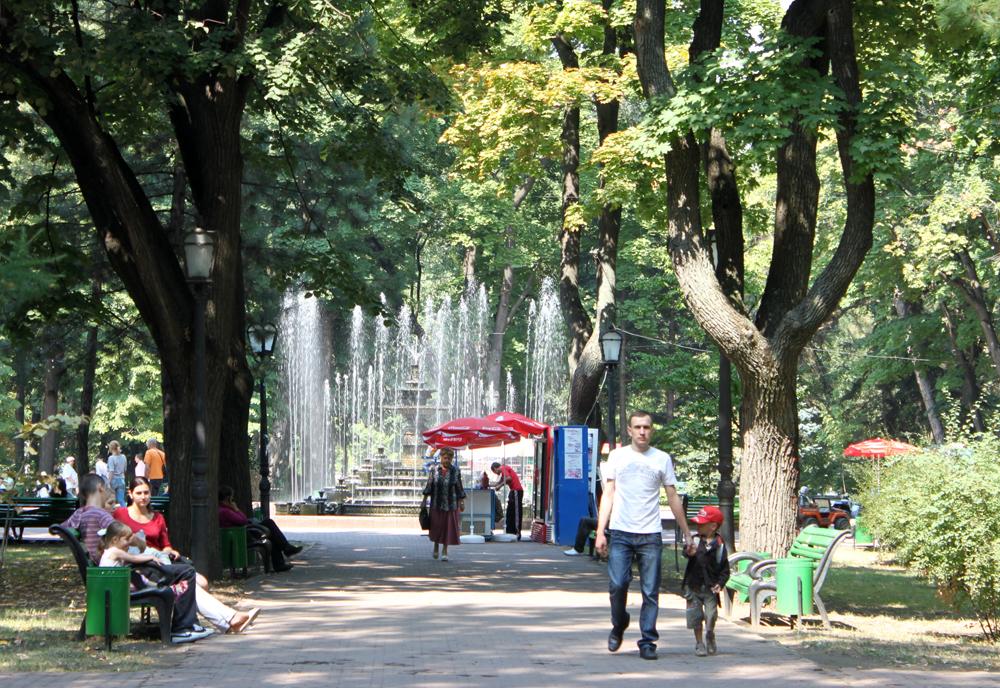 Den store parken midt i byen.