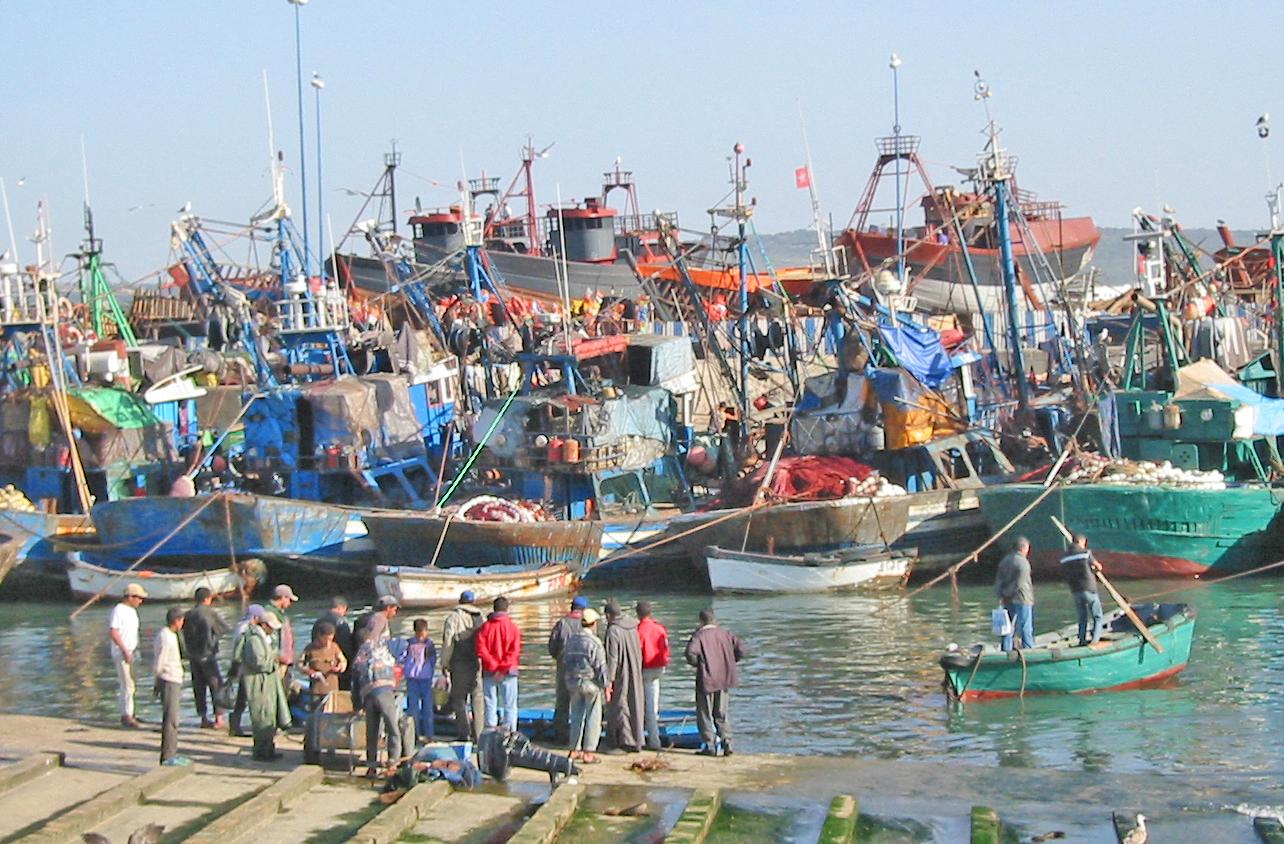 Fiskehavnen i Essaouira.