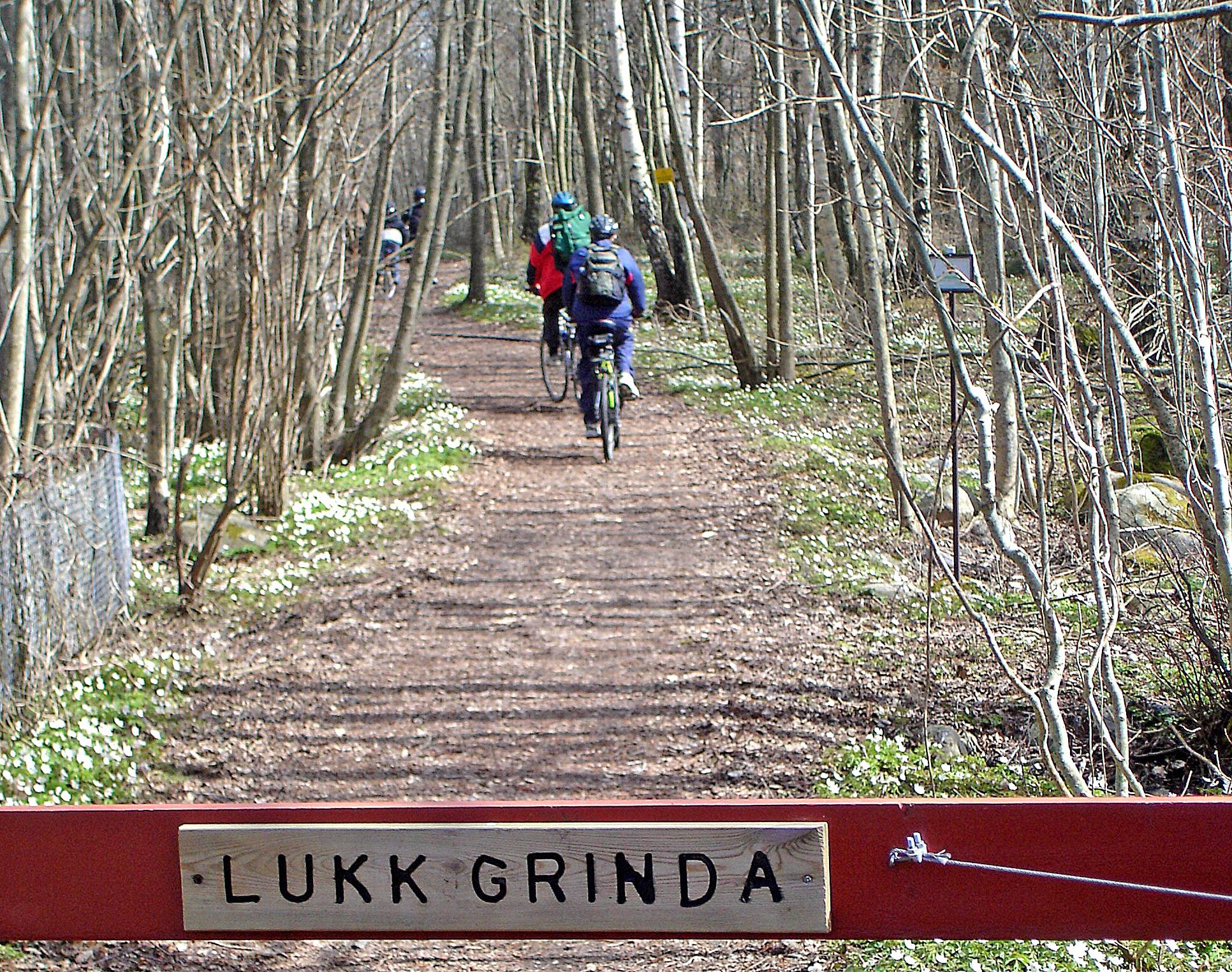 Jomfrulands flate landskap er perfekt for sykkelturer.