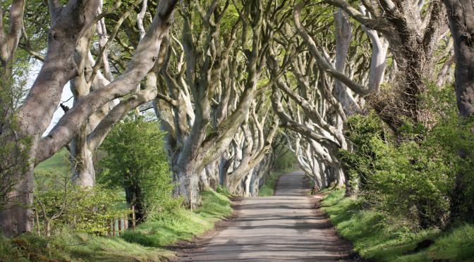 På sporet av Game of Trones