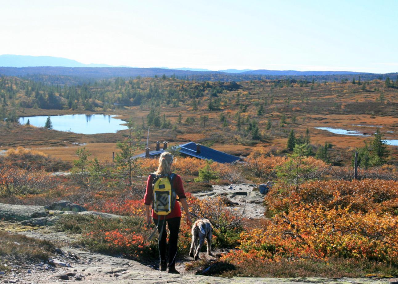 LETT TERRENG: Utsikt fra knausen over Struåsen mot vest.