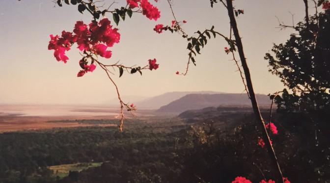 Ville og vakre Tanzania