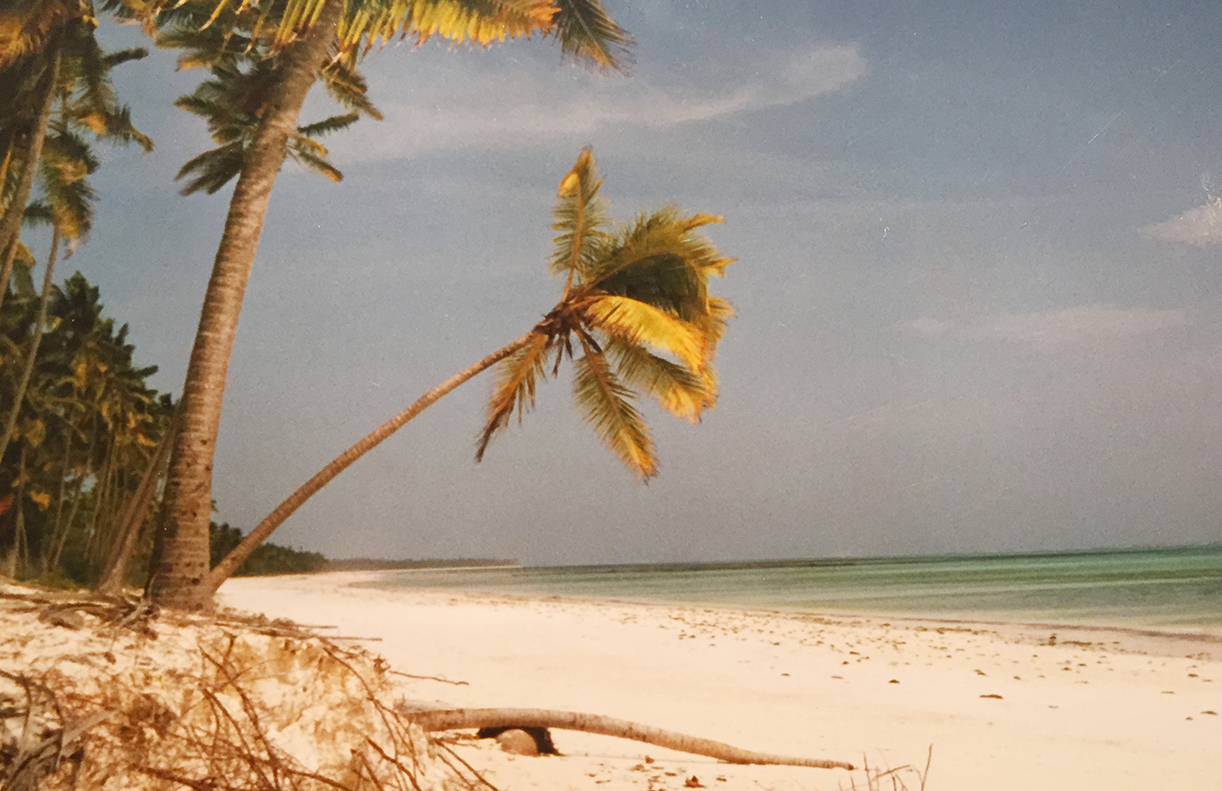 Øya Zanibar er en del av unionen Tanzania, og er det perfekte stedet å slappe av noen dager etter en villmarksferie. Foto: Linn Krogh Hansen.
