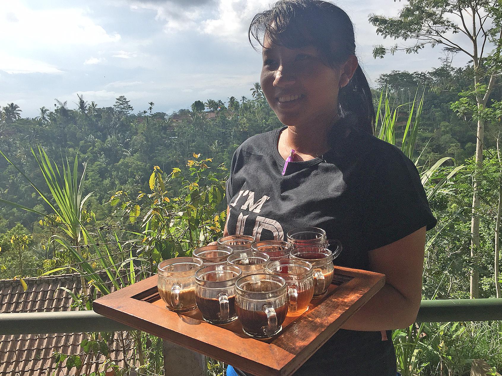 i Ubud-området dyrkes kaffe og te og kakao blant de grønne risterrassene.