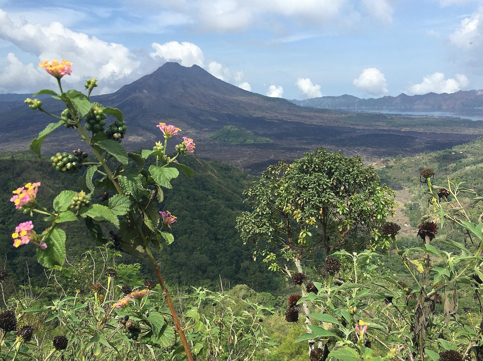 Mt. Batur, med den størknede lavaelven som tok livet en et tusentalls mennesker for ca femti år siden.
