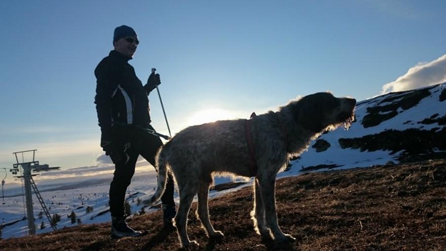 SOLNEDGANG: På toppen av Storefjell var det delvis bart, til tross for ca 1150 meters høyde.