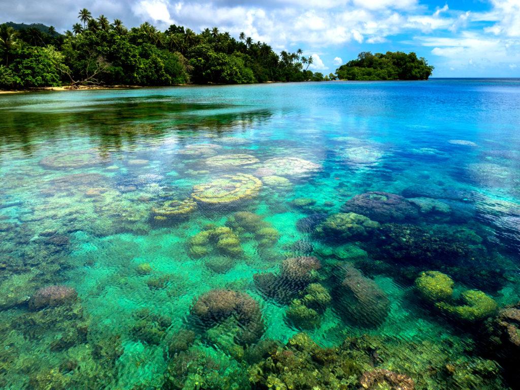 Urørt natur over og under vann venter deg på Papue Ny-Guinea. foto: Mari Ottvad/Gruppereiser.