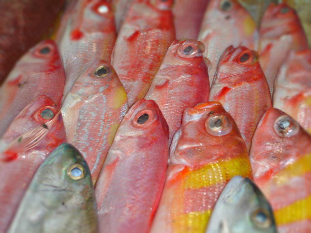 Fisk spises det mye av, og den kommer fersk på markedet hver dag.