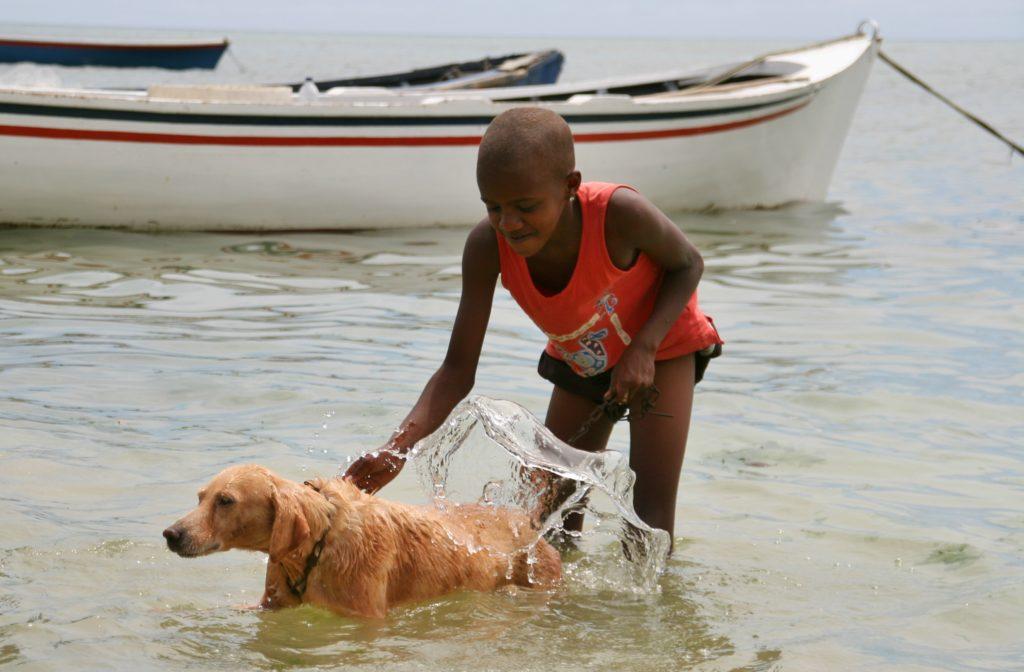 Hundene bader også jevnlig.
