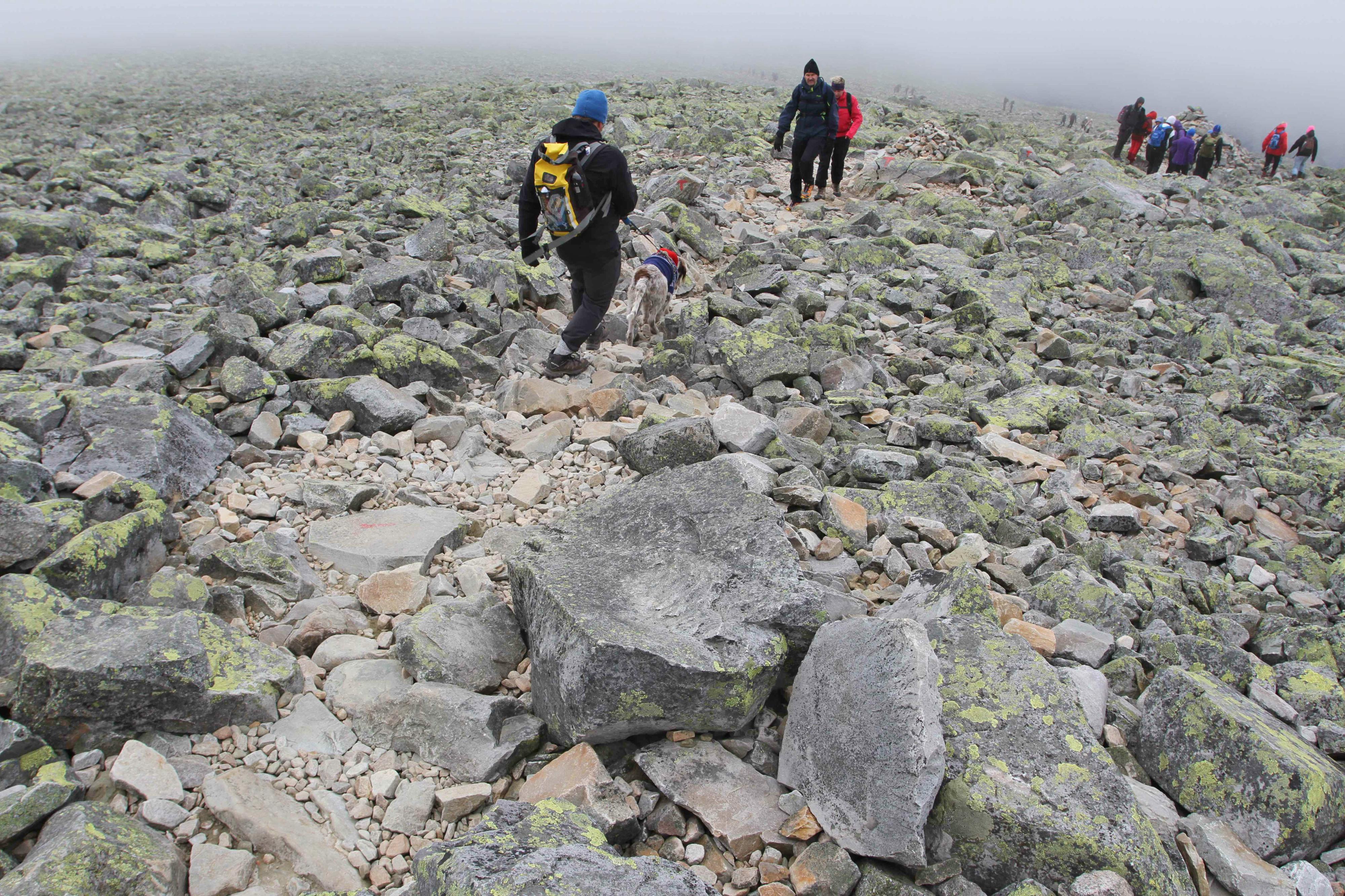 NEDOVER: Den øverste delen av stien går gjennom stein og røys.