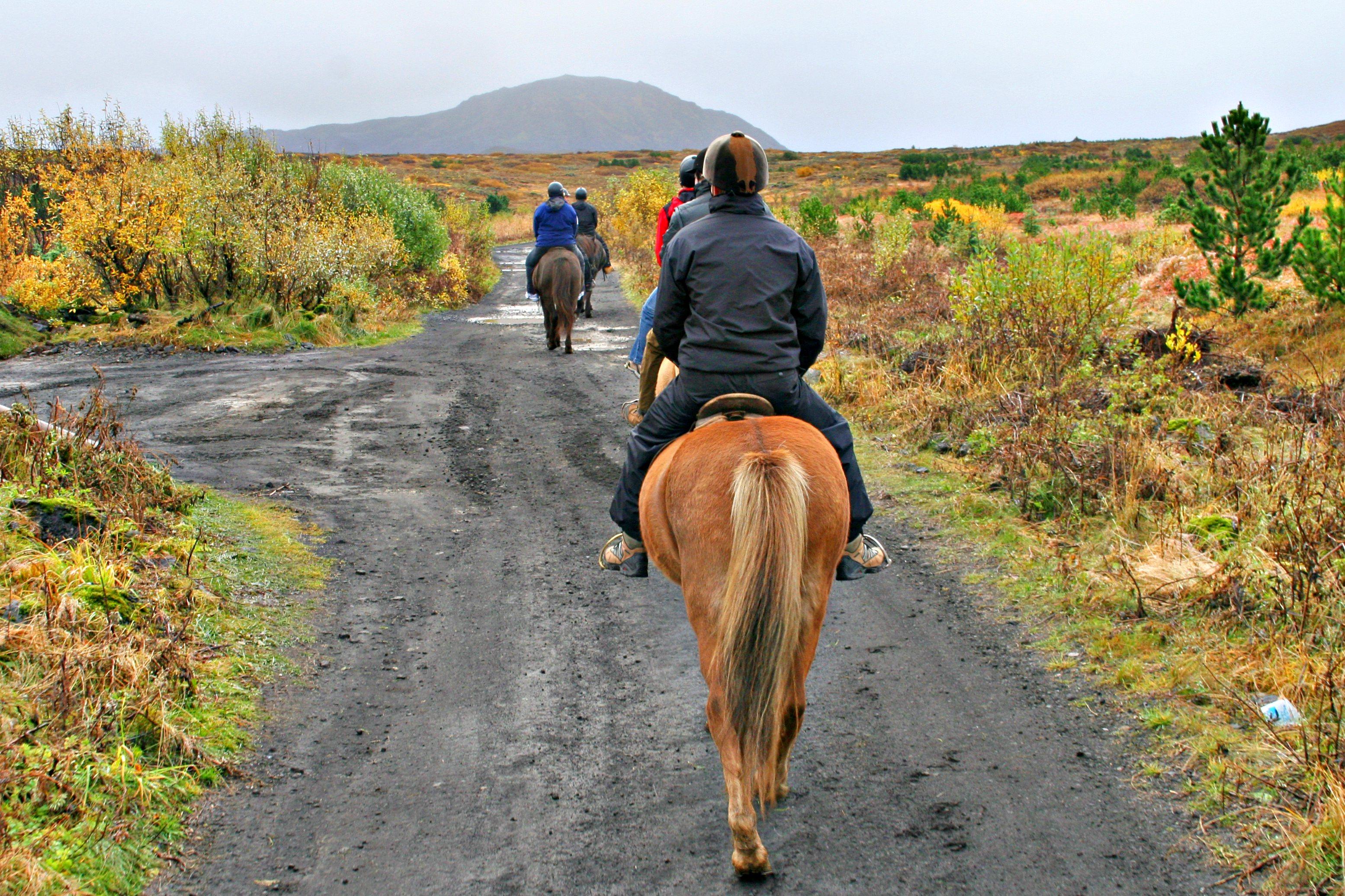 RIDETUR: En tur på hesteryggen hører med, også for nybegynnere.