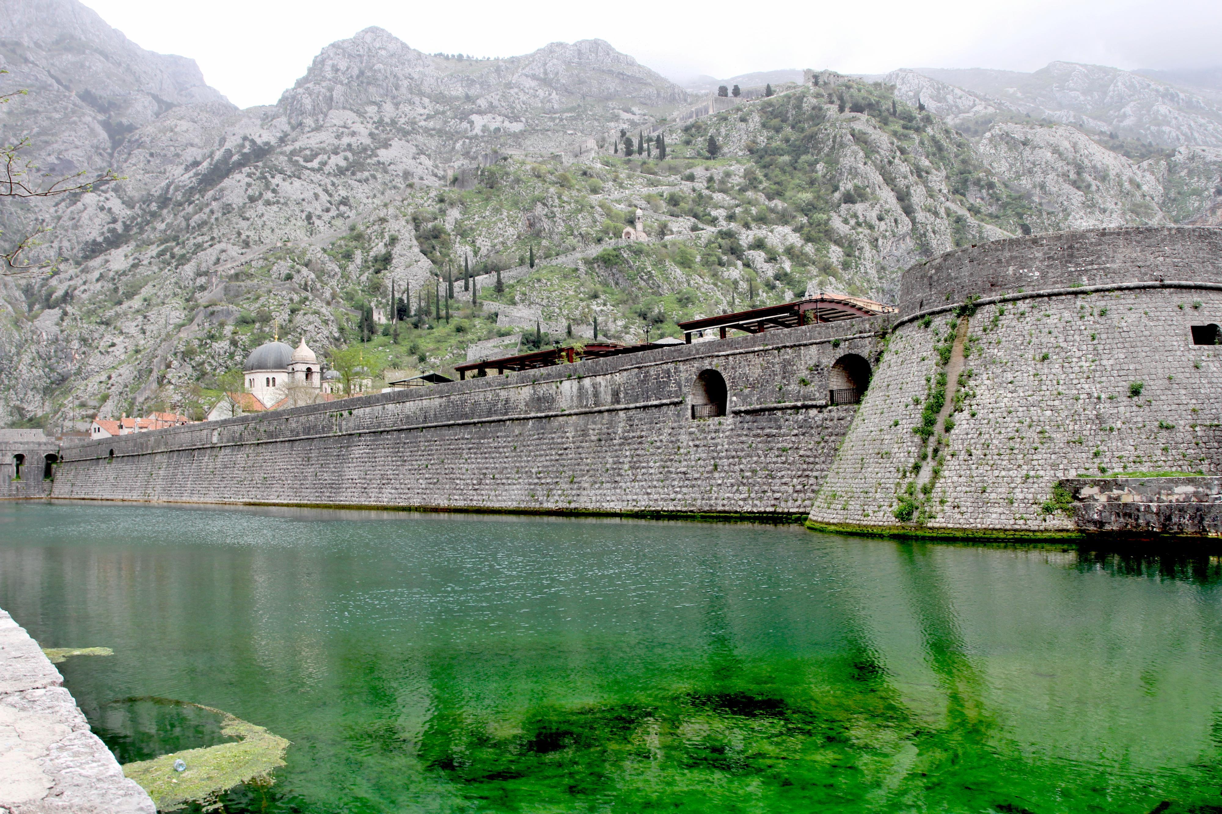 montenegrokotor
