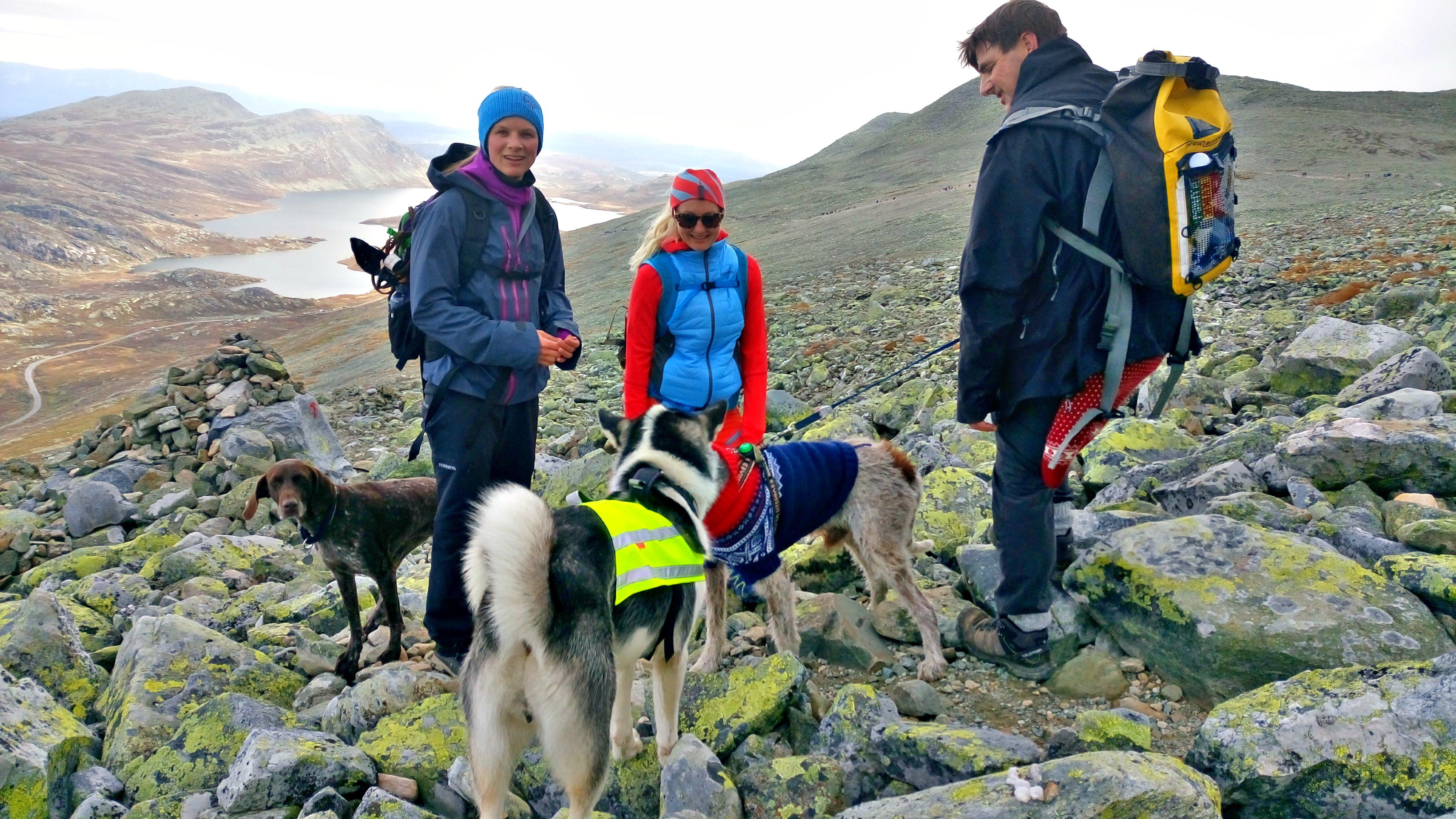 HYGGELIG HUNDEJENTER: Silje og Helene med hundeen Maja og Frøya.