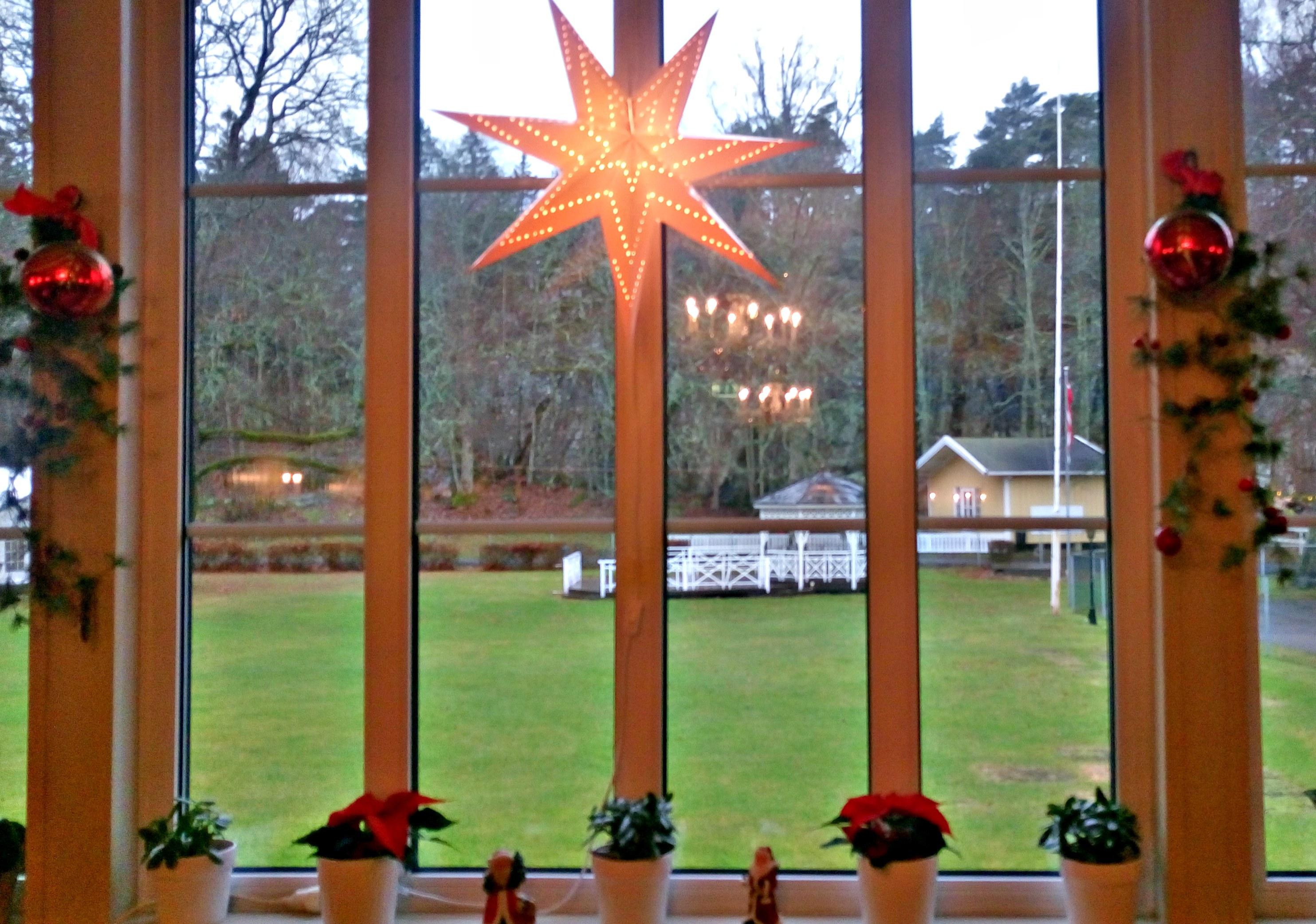 GRØNN JUL?: Ikke mye som minner om jul når man ser den grønne hagen utenfor hotellet.