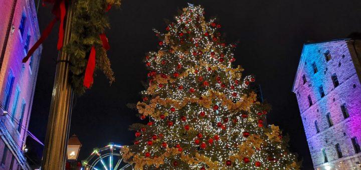 juletreet på Trornto julemarked.